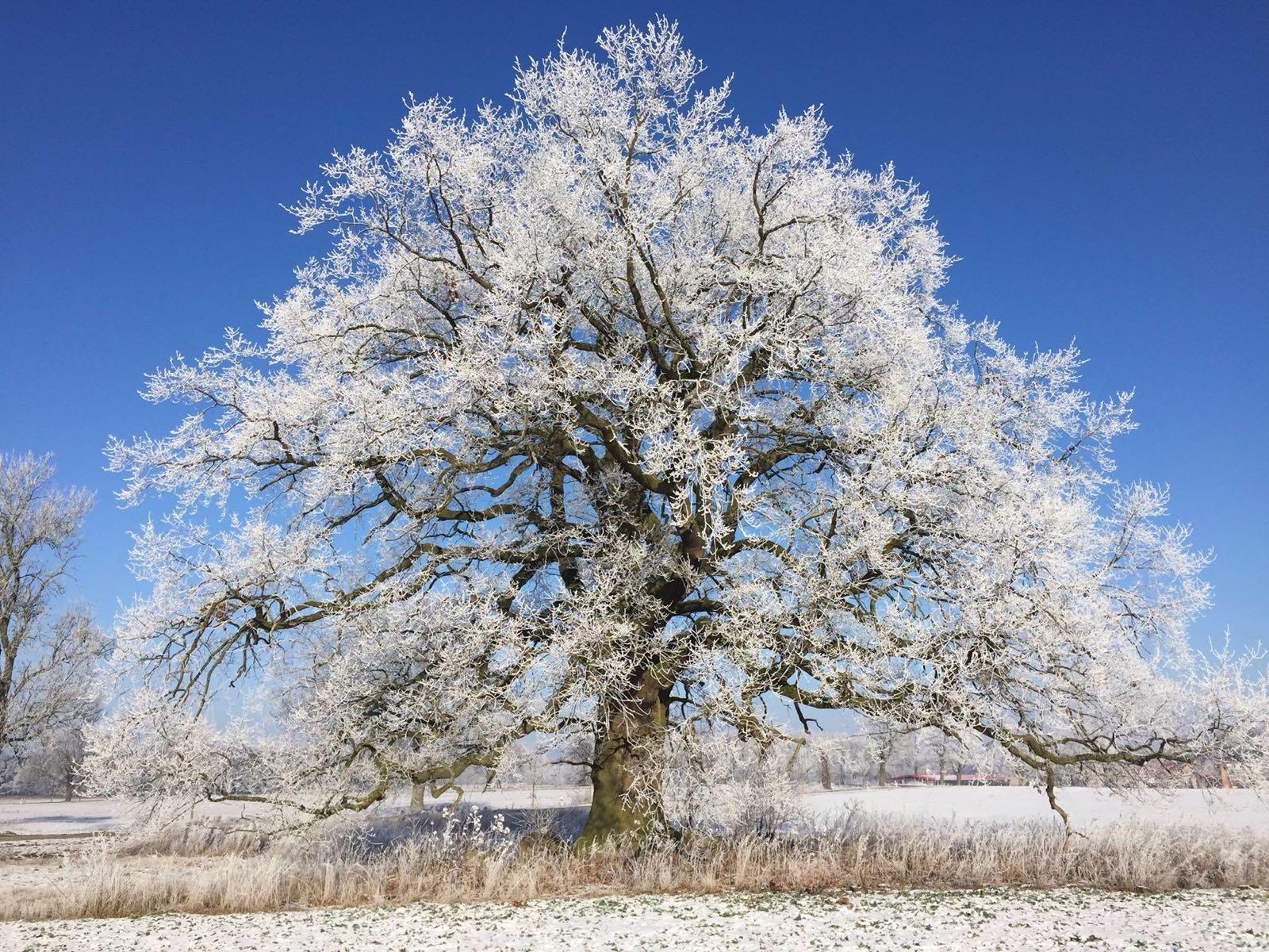 Fit im Winter: Ärztin rät die Seele zu stärken!